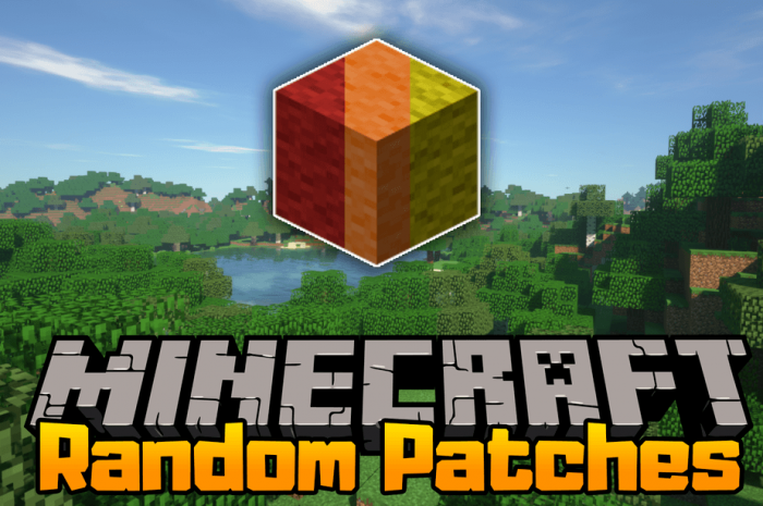 Мод RandomPatches Minecraft