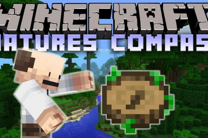 Мод Nature's Compass Minecraft