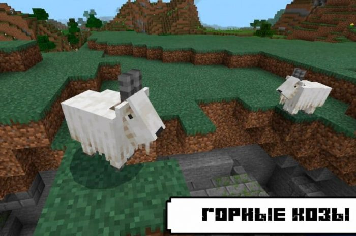 Коза Minecraft: обзор моба, лут, как приручить