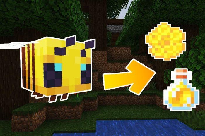 Как добыть мед в Minecraft